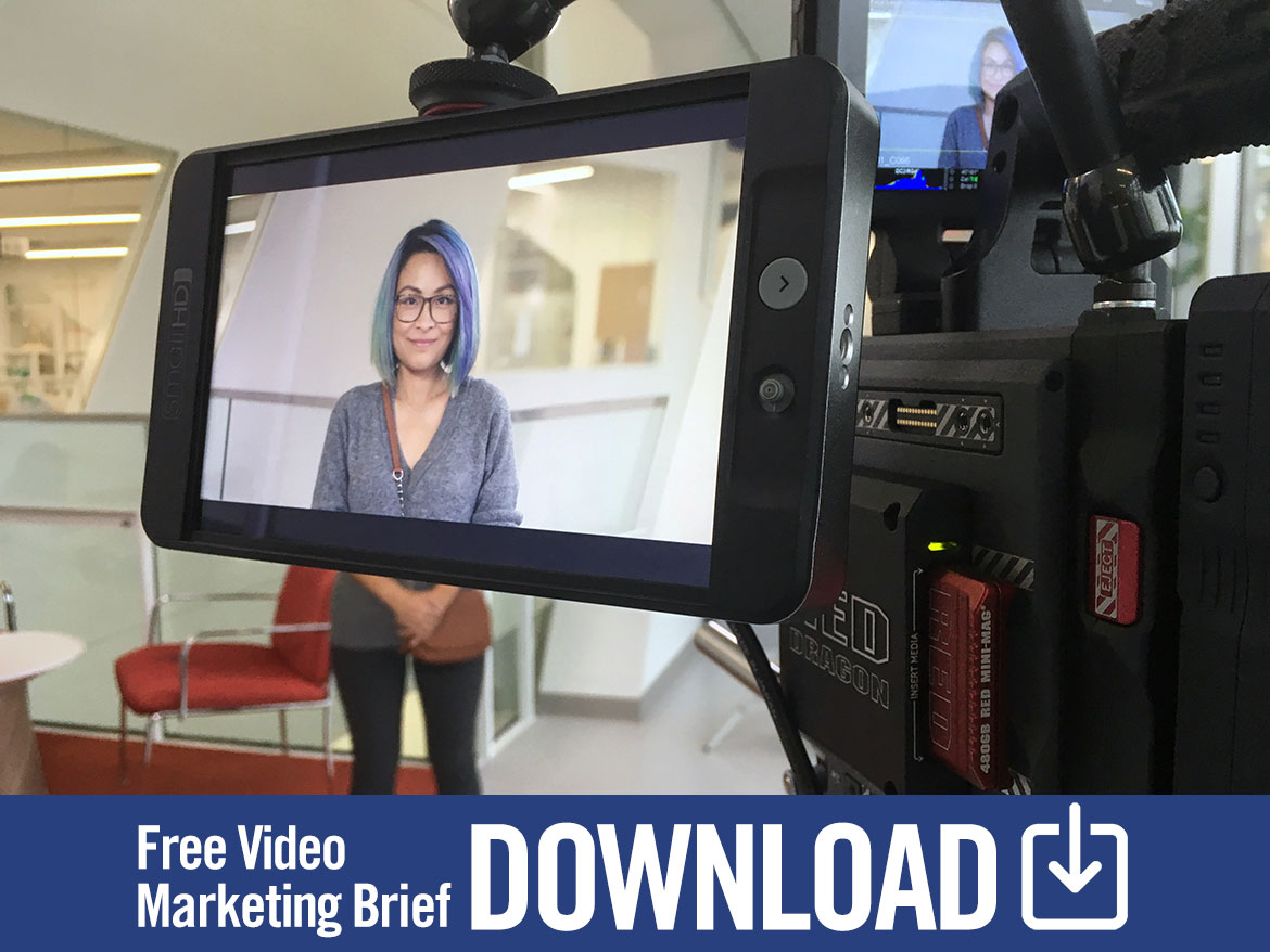 video marketing brief download